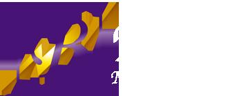 bisel-logo-footer